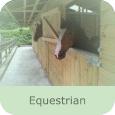 b-equestrian-h