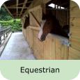 b-equestrian